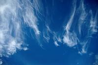 Contrasty Sky