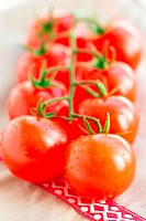 Juicy organic Cherry tomatoes over tablecloth