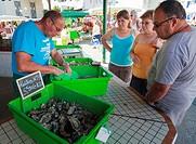 Shellfish market trader and customers at French market.