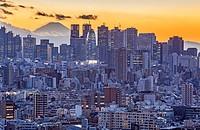 Skyscrapers of Shinjuku and Mount Fuji, Tokyo, Japan.
