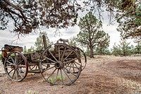 Abandoned horsedrawn wagon.