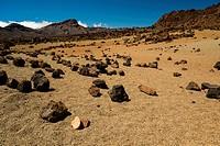 Vulkanlandschaft, Hochebene, Parque Nacional de las Cañadas del Teide, Teide-Nationalpark, UNESCO Weltnaturerbe, Teneriffa, Kanarische Inseln, Spanien...
