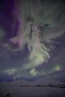 Aurora Borealis or Northern Lights in the northern Yukon.