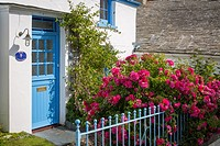 Rose Cottage - featured in TV series ´Doc Martin´ in seaport town of Port Isaac, Cornwall, England.