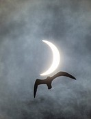 (150320) -- THORSHAVN, March 20, 2015 () -- A total eclipse of the sun is seen over Thorshavn of Faroe Islands on March 20, 2015. (/Zhuge Quansheng) (...