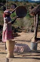 Woman winnowing grain.