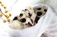 White colored image of Death Skeleton (Grim Reaper)