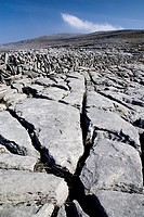 Limestone pavements with crevices grykes and dry stone wall in the distance.