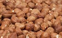 Hazelnuts. Selective Focus