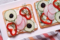 sandwich with vegetables and soft cheese top view