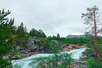 Wild glacier river