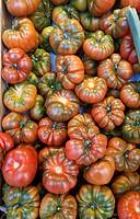 raf tomatoes. san miguel market. madrid.