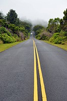 USA, Hawaii, Waimea, street in fog, Kokee State Park