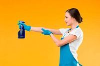 cleaning fun