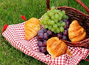 picnic on green grass with grapes