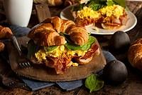 Ham and Cheese Egg Breakfast Sandwich
