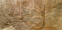 Relief depicting The royal lion hunt. Assyrian, about 645-635 BC From Nineveh, North Palace. The king, with his high distinctive hat, races round the ...