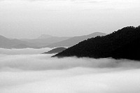Black and white, The fog mist and the mountain in Thailand