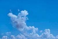 piggy cloud