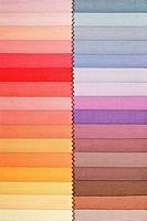 Fabric swatch 2