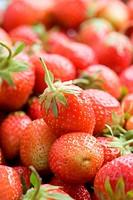 Ripe red strawberries