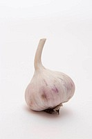 Heads of garlic isolated
