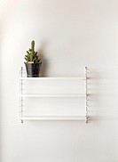 White wall in home interior. Empty bookshelf with a cactus.