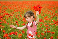 A girl collects poppy flowers