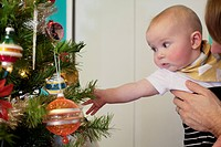 Little boy (2-5 months) reaching to christmas tree