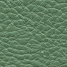 green leather texture closeup