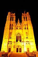 Cathedral St. Michael in Brussel