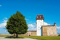 Hermanni Linnus, Hermann castle, Narva, Ida-Viru County, eastern Estonia, Europe.
