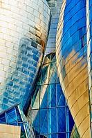 Detail of Guggenheim Museum, Bilbao, Biscay, Basque Country, Euskadi, Spain, Europe.