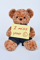 A cute teddy bear holding a yellow sign that says I miss you isolated on a white background.