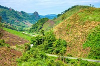 Lush green rural landscape, Vientiane Province, Laos.