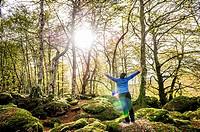 Magical beech forest between Organbidea mountain pass and Orbaitzeta foundry , Region of Navarra, Spain.