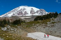 View from the Skyline Trail of Mount Rainier with hikers on a snow field in Mt. Rainier National Park in Washington State, USA.