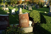 A Catholic cemetery containing headstones during the late afternoon.