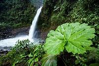 La Paz Waterfall - north of Alajuela, Costa Rica.