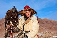Mongolia, Bayan-Olgii province, Arman, Kazakh eagle hunter, Golden Eagle hunting in Altai mountains.