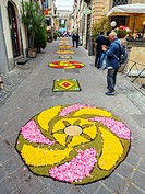 A street in the old town of Bolsena during the traditional floral carpet which is done every year for the Corpus Christi - Bolsena, Italy.