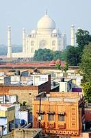 View of the Taj Mahal.