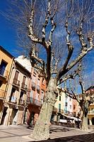 Coloured and typical street, Collioure or Cotlliure, Pyrénées-Orientales, Occitanie, France, Europe.