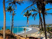 view at beach with palmtrees in kovalam, kerala, india