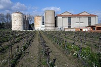 A rural community cooperative winery