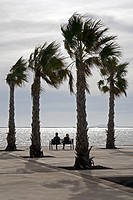 A couple sits on a bench by the sea on a blustery day