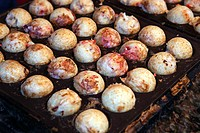 Takoyaki, grilled minced octopus and pickled ginger, sold at festival in Tokyo, Japan.
