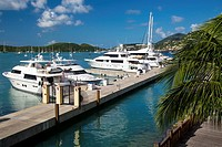 Marina in Charlotte Amalie Harbor, St Thomas, US Virgin Islands.
