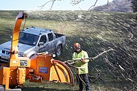 Workmen Shredding trees with a wood chipping machine which have fallen during a storm in the countryside in South Wales, UK