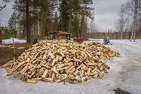 Pile of wood for campfires, Lapland, Sweden.